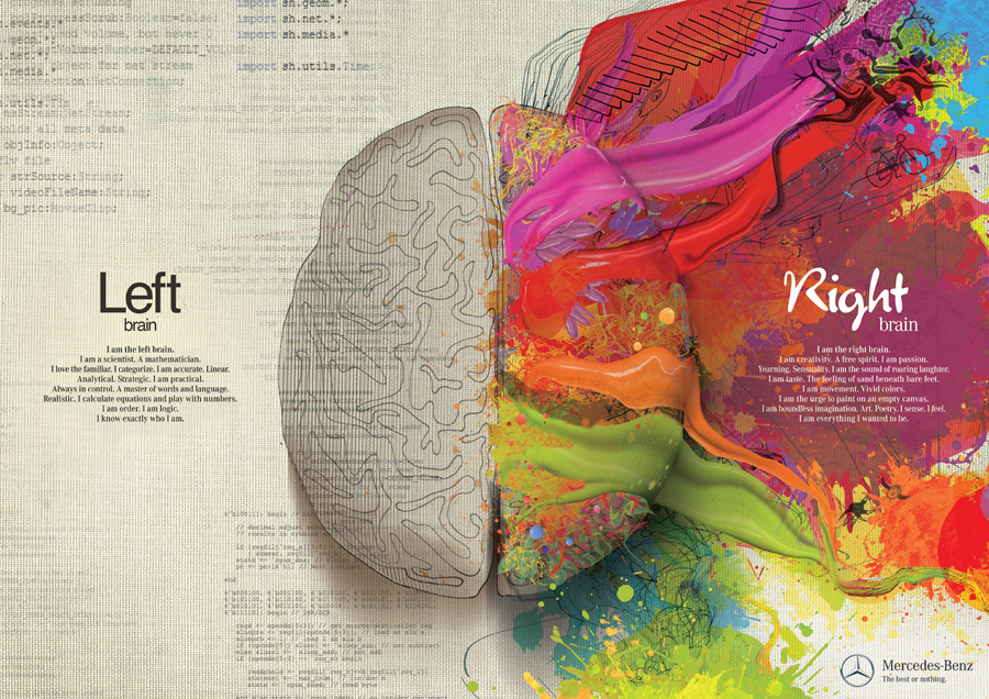 Left brain / Right brain